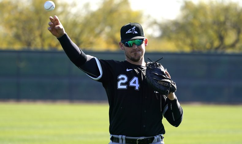 Playing the Percentiles: Chicago White Sox 2020 Season Preview