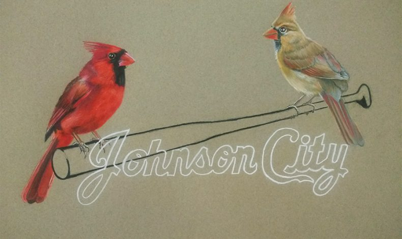 Too Far From Town: Johnson City Cardinals