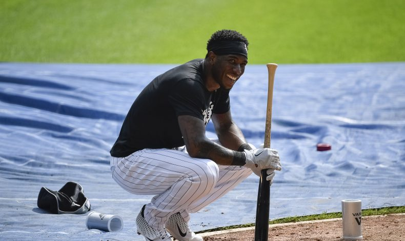 Rubbing Mud: Tim Anderson is a Go-Getter