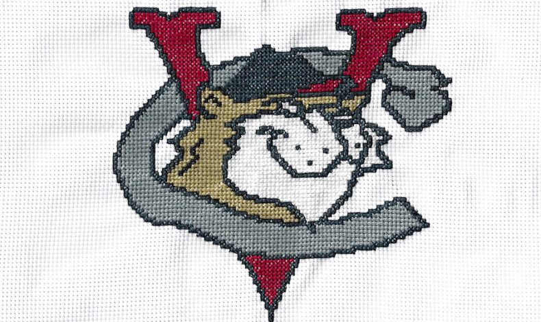 Too Far From Town: Tri-City ValleyCats